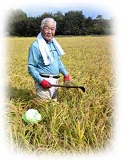 当院契約のお米の生産者と田んぼの様子